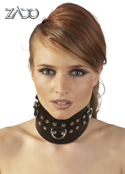 Leather Collar with D-rings